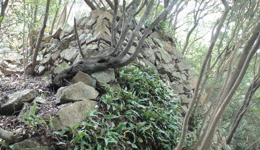 西の登り石垣3