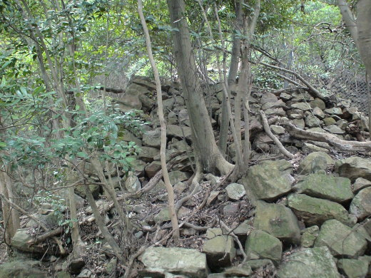 東の登り石垣2