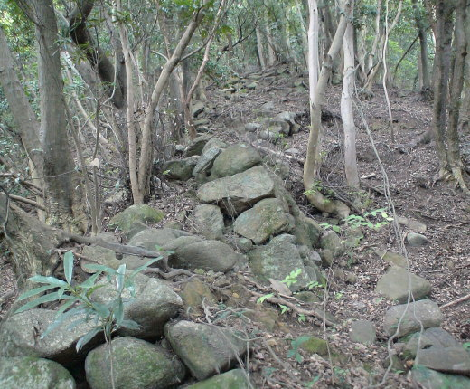 東の登り石垣3