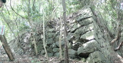東の丸 最も古い石垣