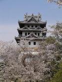 天守閣と桜 2