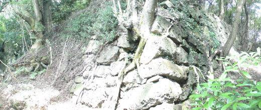 洲本城で最も古い石垣 1